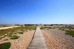 The Dungeness Estate and National Nature Reserve
